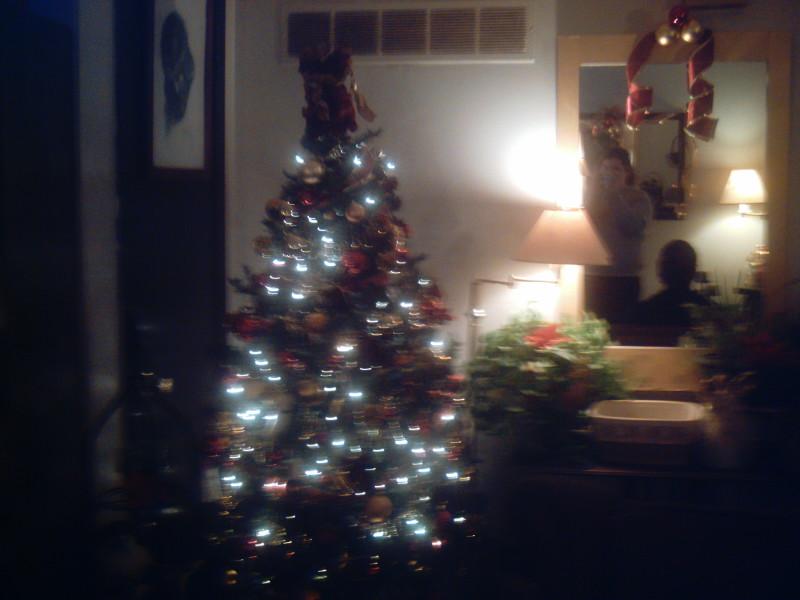 [2008+Christmas+tree+002.jpg]