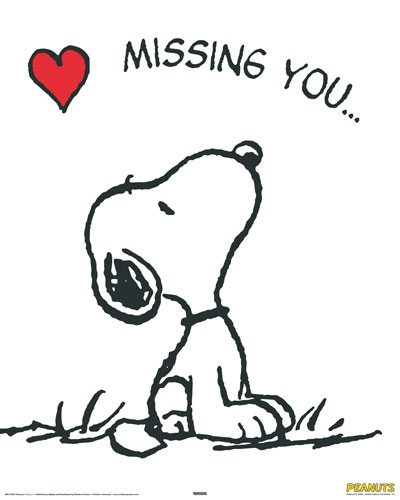 miss you so much images. i miss you very much.