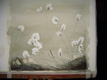 Cotton grass flowers