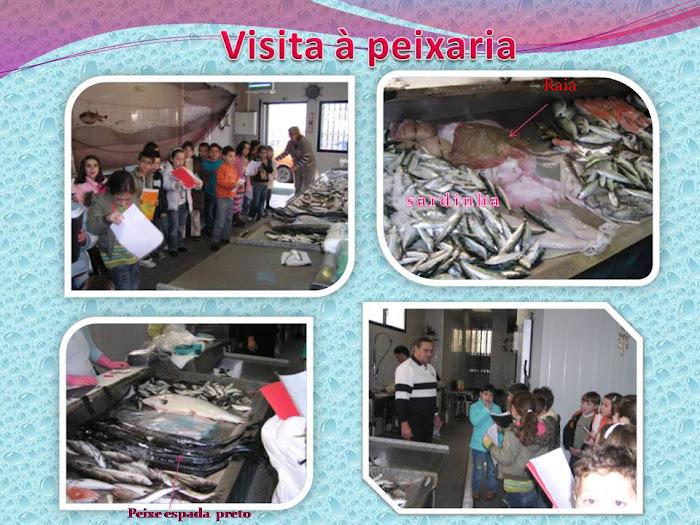 Fotos tiradas durante a visita