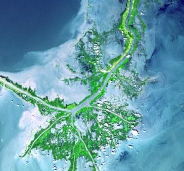 external image mississippi_delta_from_space.jpg
