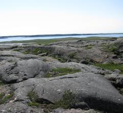 Ini Dia Batu Tertua di Muka Bumi - www.jurukunci.net
