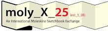 Moleskine X25