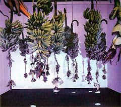Musa Paradisiaca 1993 - 1996