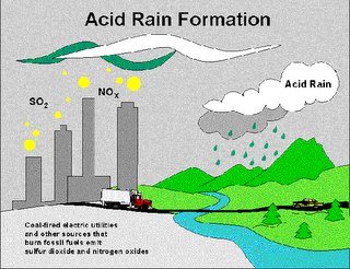 the problem of acid rain in our world Although the term has since faded from public consciousness, acid rain is a complex and global problem that still exists today what is acid rain first identified in 1872 in sweden and studied in the us beginning in the 1950s, acid rain is precipitation in the form of rain, snow, hail, dew, or fog that transports sulfur and nitrogen.