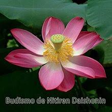 Baixe aqui o CD Budismo<br>de Nichiren Daishonin