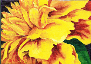 [marigold+magnified]