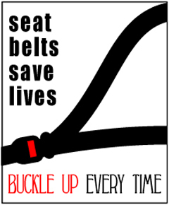 the importance of wearing seat belts Safety toolbox topic on why safety belts exist and their importance to your  people in the front seat are often struck by unbelted rear-seat passengers who have.