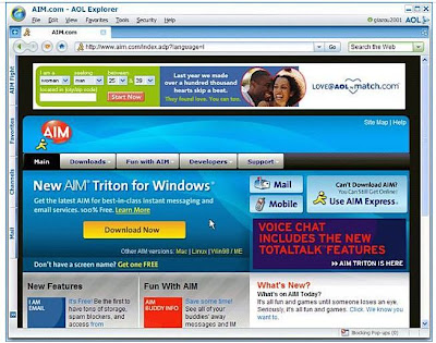 AOL Explorer support, Netscape support