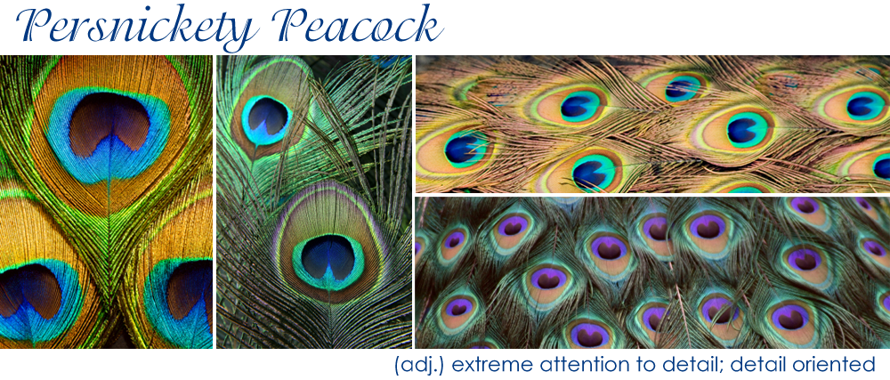 Persnickety Peacock