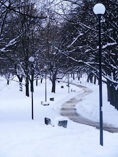 warsaw warszawa Poland polska winter snow blizzard park