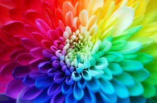 Colores del Feng Shui para la Salud