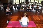 Terapias Naturais, Hatha & Yoga Dance