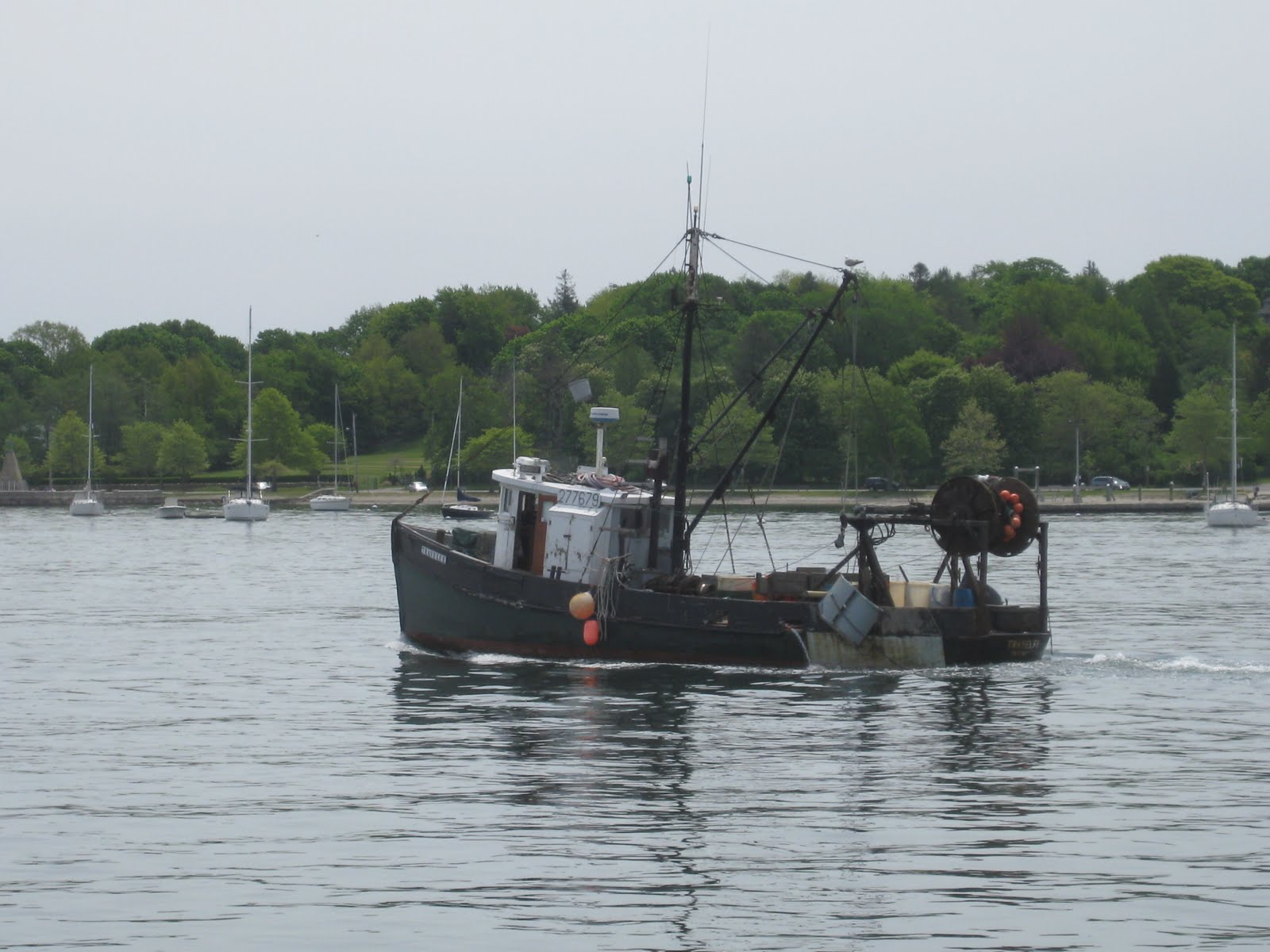 New and improving welcome to newport rhode island for Fishing newport ri
