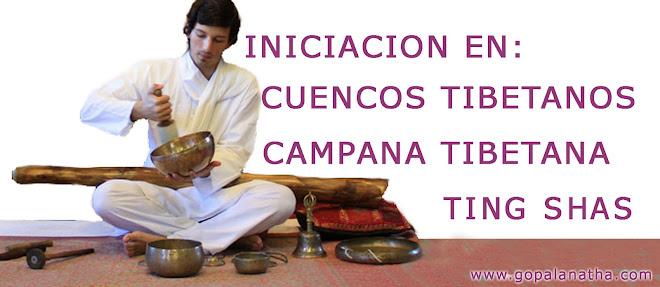 Iniciación en Cuencos, campana tibetana y ting-shas