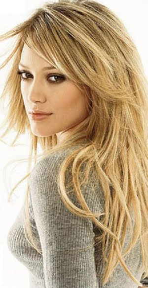 2014 Layered Hairstyles for Long Hair