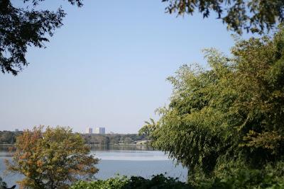 Whiterock Lake, Dallas, Texas, trees, downtown, skyline