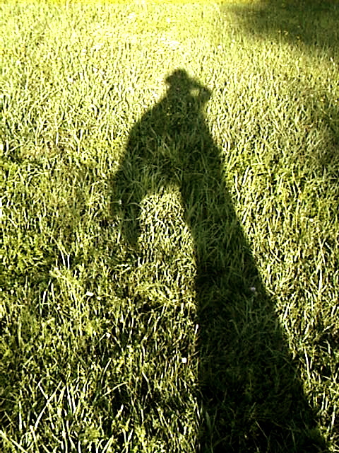 my shadow follows