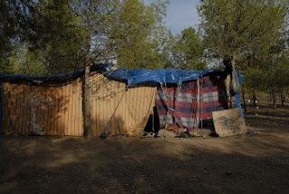 Campement de migrants dans la forêt, photo de Anaïs Pachabézian