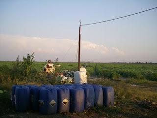 Taniche d'acqua davanti a un campo di pomodori