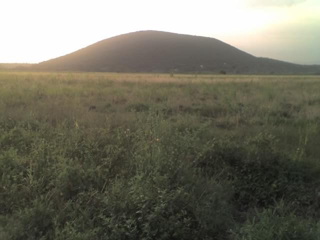 Cerro la Tortuga