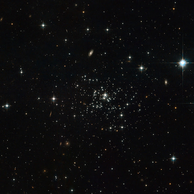 Hubble captures the young and unusual globular cluster Palomar 1