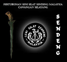 Logo PSSSM