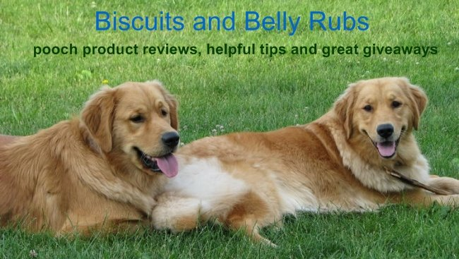 Biscuits and Belly Rubs