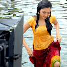 Tamanna Wet in Spicy Photos