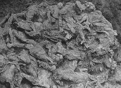 PHOTO: Srebrenica genocide mass grave at Pilica farm, twenty feet deep and a