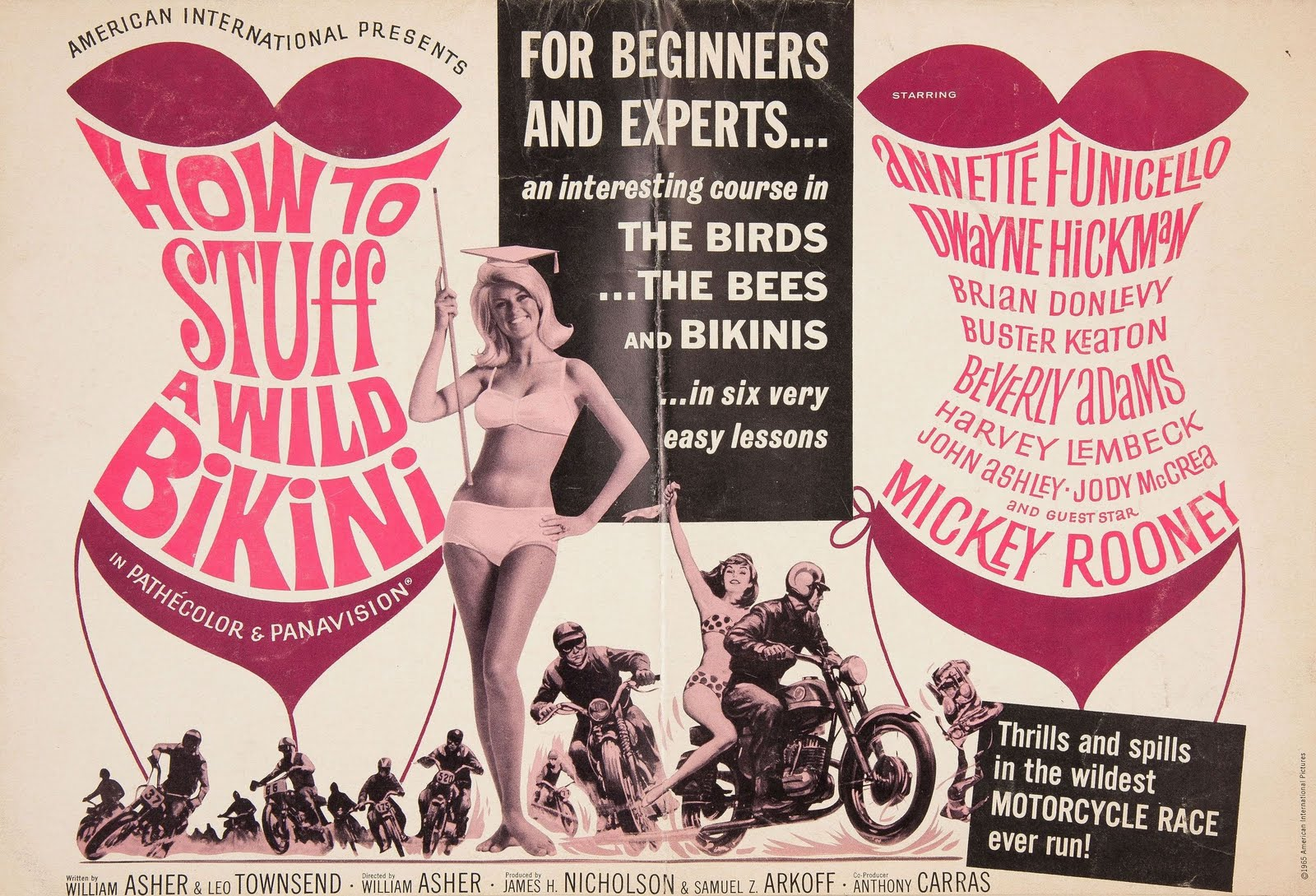 How to Stuff a Wild Bikini Pressbook Cover - 1965