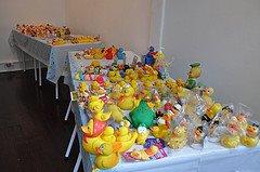 [ducks+for+sale+2.jpg]
