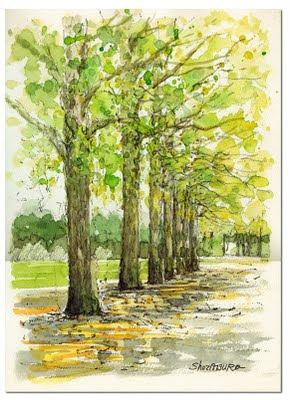 「樹木のある風景」のブログ記事一覧-樹木との出 …