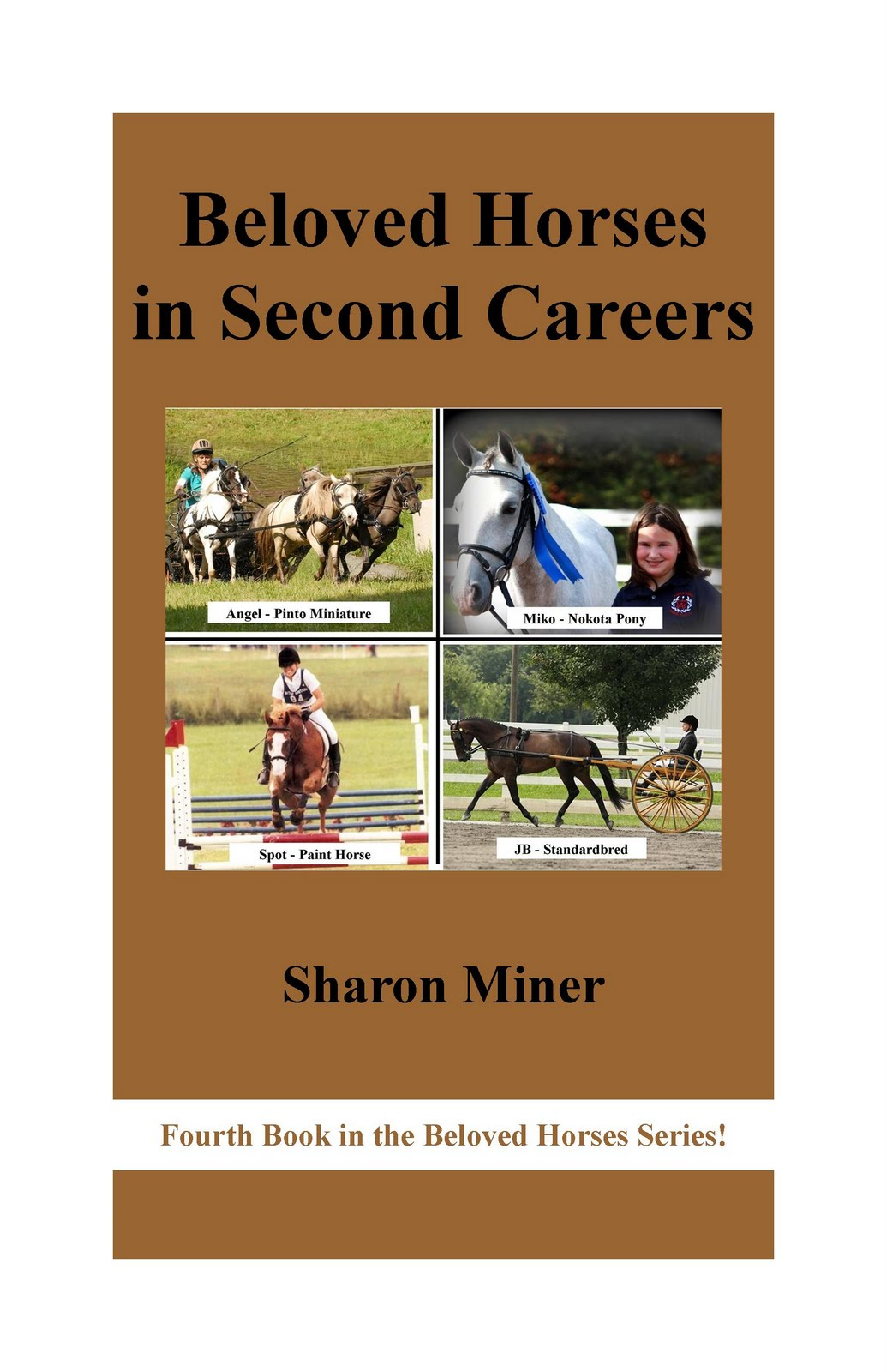 Book Cover Contest : Horse book reviews cover contest result