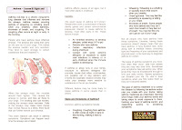 Health Information Guide HELP Asthma Pamphlet - Asthma brochure template