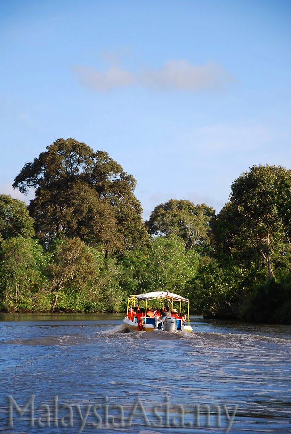 Klias Wetland River Cruise Sabah