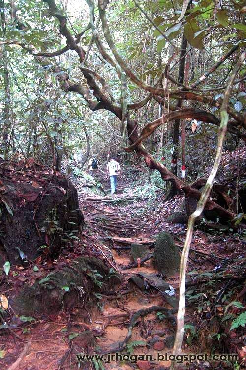Sarawak Gunung Gading Park