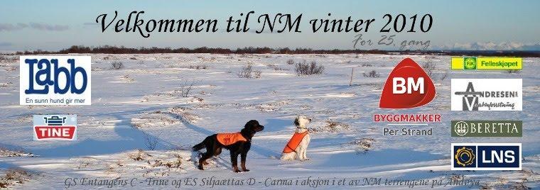 NM vinter 2010