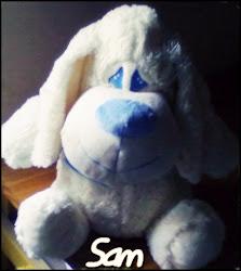 Sam *-*