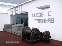 Café Portugal - PASSEIO DE JORNALISTAS nos Açores - Pico