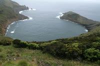 Café Portugal - PASSEIO DE JORNALISTAS nos Açores - Faial