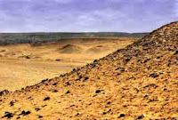 Keeping Herbs In A Desert Environment