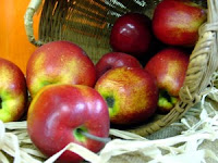 Harvest Apple Basket