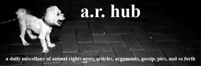 a.r. hub