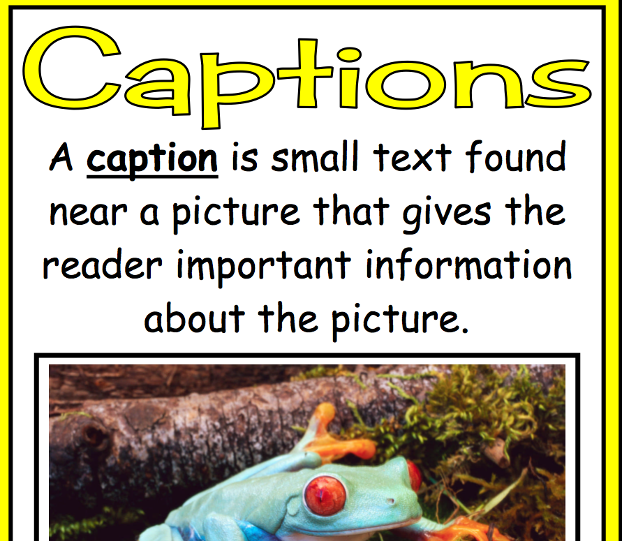 Non Fiction Text. non-fiction text features