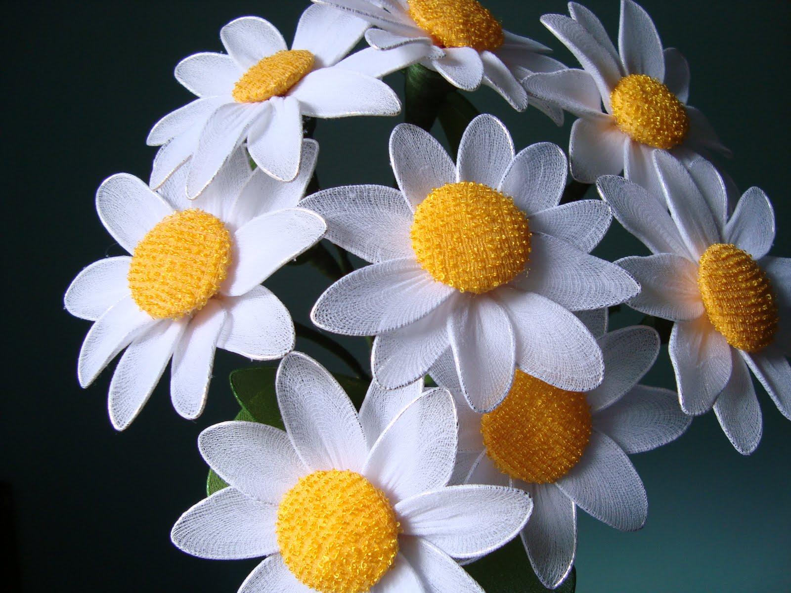 [flores]