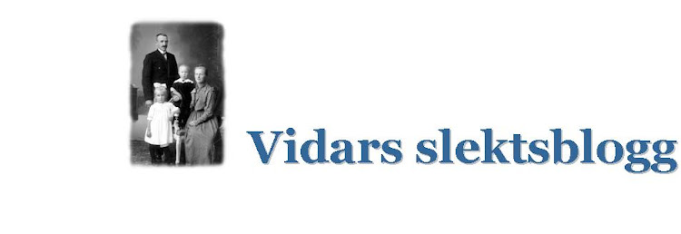 Vidars slektsblogg