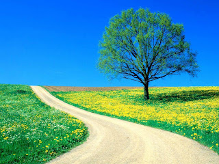 http://4.bp.blogspot.com/_sGtf1-L3OY0/TMIu5napGhI/AAAAAAAABDA/HckxWI87PE8/s1600/estrada_primavera.jpg