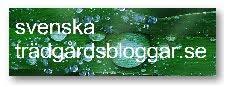 Hitta fler trädgårdsbloggar