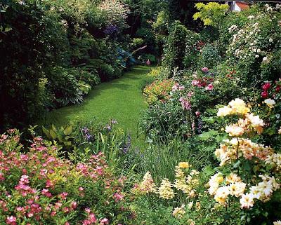 Notre jardin secret d cembre 2009 for Jardin a l anglaise photos